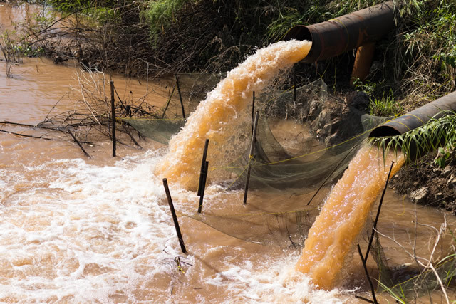 汚染 水質